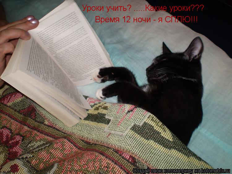 Котоматрица: Уроки учить? .....Какие уроки??? Время 12 ночи - я СПЛЮ!!!