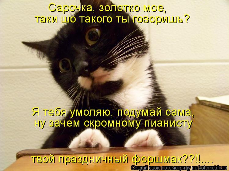 Котоматрица: Сарочка, золотко мое, таки шо такого ты говоришь? Я тебя умоляю, подумай сама, ну зачем скромному пианисту твой праздничный форшмак??!!....