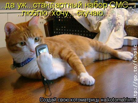 Котоматрица: ..да уж...стандартный набор СМС... ..люблю..хочу... скучаю...