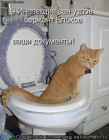 Котоматрица: - Инспекция сан узлов сержант Блохов ваши документы!