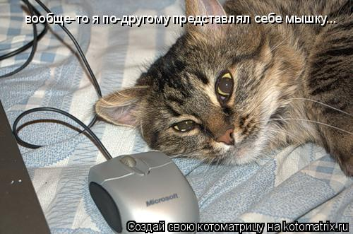 Котоматрица: вообще-то я по-другому представлял себе мышку...