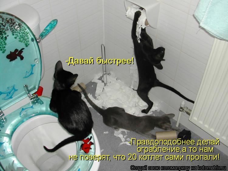 Котоматрица: -Давай быстрее! -Правдоподобнее делай  ограбление,а то нам не поверят, что 20 котлет сами пропали!