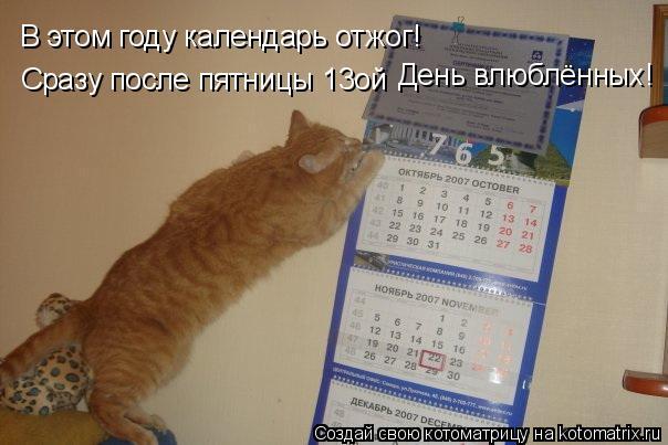 Котоматрица: В этом году календарь отжог! Сразу после пятницы 13ой День влюблённых!