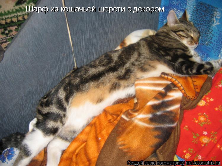 Котоматрица: Шарф из кошачьей шерсти с декором