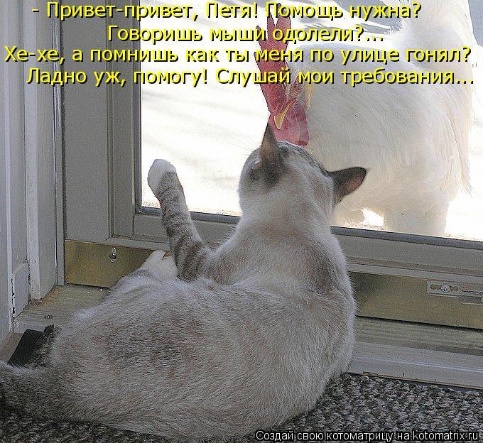 Котоматрица: - Привет-привет, Петя! Помощь нужна? Говоришь мыши одолели?... Ладно уж, помогу! Слушай мои требования... Хе-хе, а помнишь как ты меня по улице го