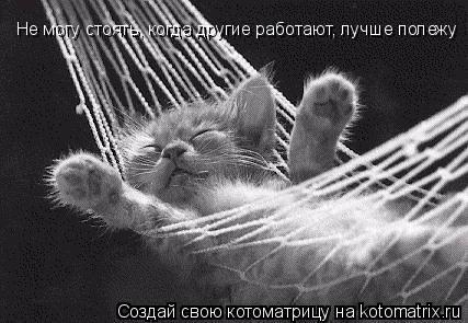 Котоматрица: Не могу стоять, когда другие работают, лучше полежу Не могу стоять, когда другие работают, лучше полежу