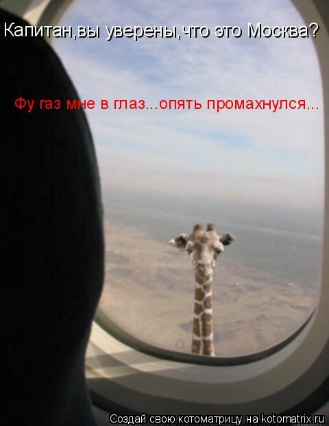 Котоматрица: Капитан,вы уверены,что это Москва? Фу газ мне в глаз...опять промахнулся...