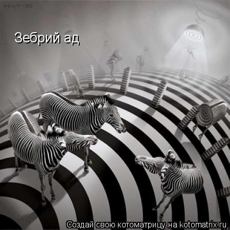 Котоматрица: Зебрий ад