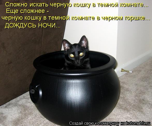 Котоматрица: Сложно искать черную кошку в темной комнате...  Еще сложнее -  черную кошку в темной комнате в черном горшке... ДОЖДУСЬ НОЧИ...