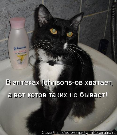 Котоматрица: В аптеках johnsons-ов хватает, а вот котов таких не бывает!