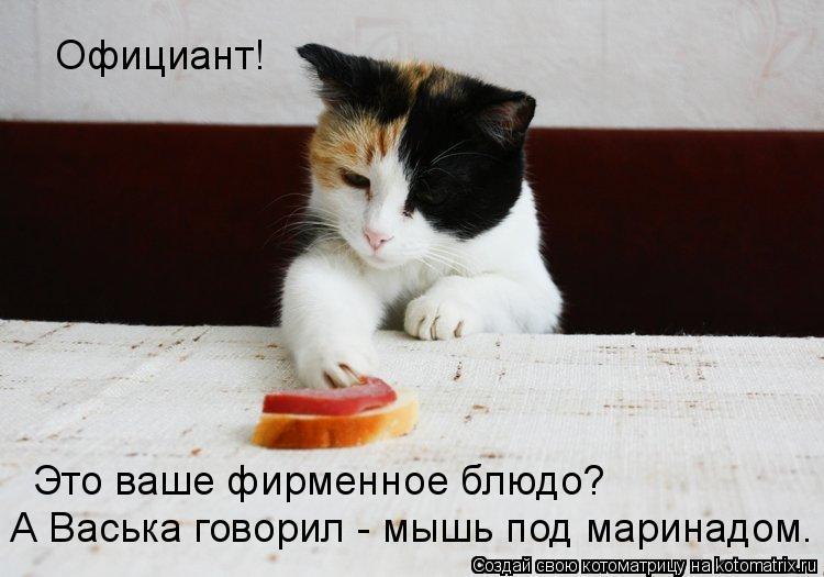 Котоматрица: Официант! Это ваше фирменное блюдо? А Васька говорил - мышь под маринадом.