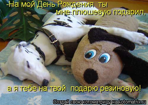 Котоматрица: -На мой День Рождения  ты  мне плюшевую подарил, а я тебе на твой  подарю резиновую!