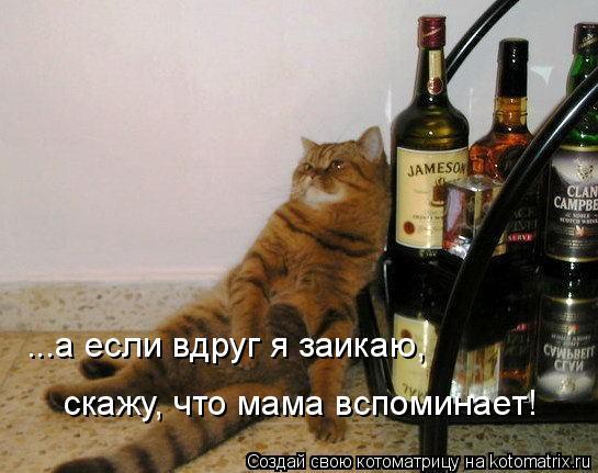Котоматрица: ...а если вдруг я заикаю, скажу, что мама вспоминает!