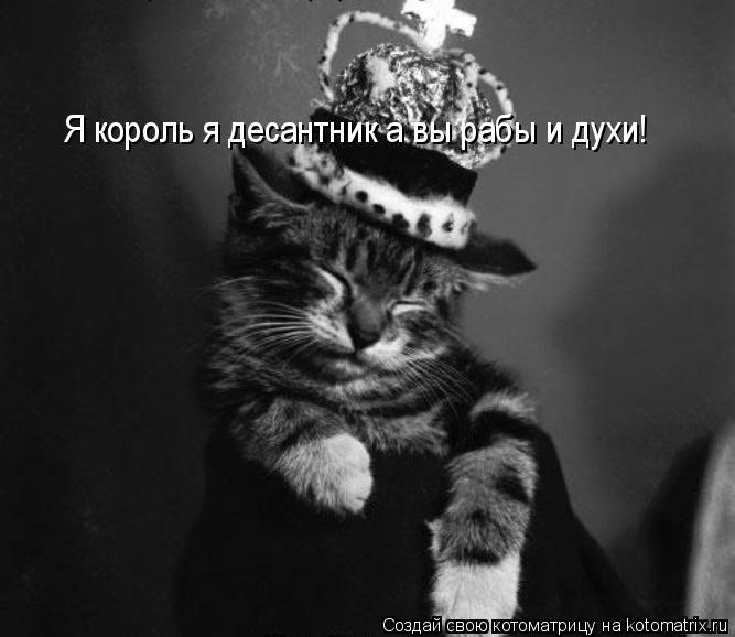 Котоматрица: Я король я десантник а вы рабы и духи!  Я король я десантник а вы рабы и духи!