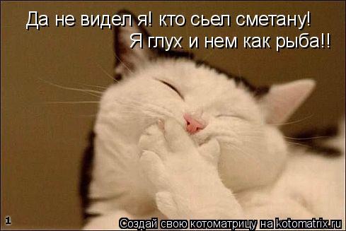 Котоматрица: Да не видел я! кто сьел сметану! Я глух и нем как рыба!!