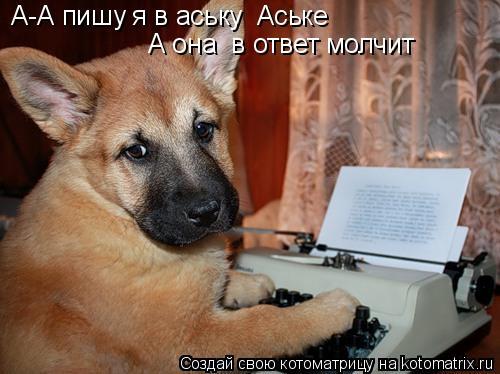 Котоматрица: А-А пишу я в аську  Аське А она  в ответ молчит