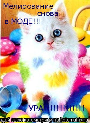 Котоматрица: Мелирование снова в МОДЕ!!! УРА!!!!!!!!!!!!!