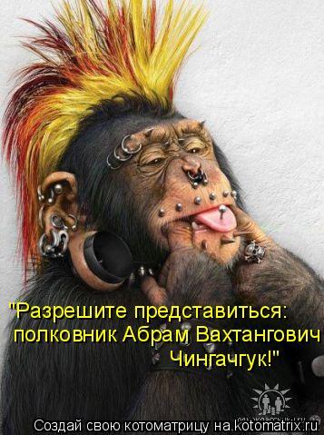 "Котоматрица: ""Разрешите представиться:   полковник Абрам Вахтангович  Чингачгук!"""
