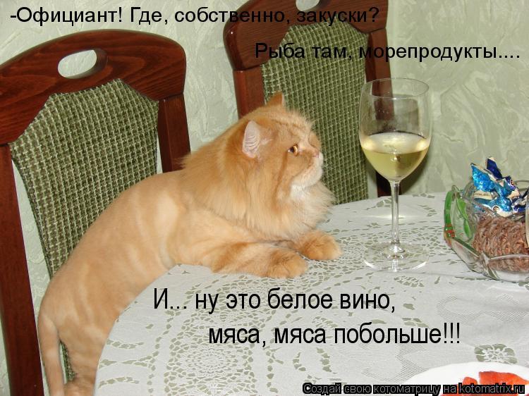 Котоматрица: -Официант! Где, собственно, закуски? Рыба там, морепродукты....  И... ну это белое вино, мяса, мяса побольше!!!