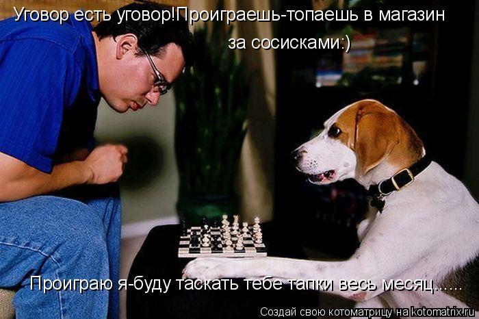 Котоматрица: Уговор есть уговор!Проиграешь-топаешь в магазин  за сосисками:) Проиграю я-буду таскать тебе тапки весь месяц......