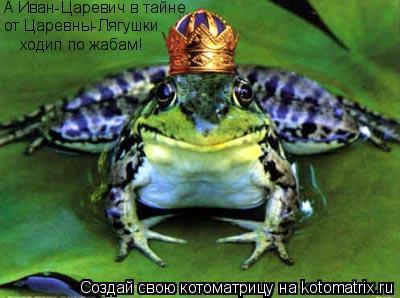 Котоматрица: А Иван-Царевич в тайне от Царевны-Лягушки ходил по жабам!