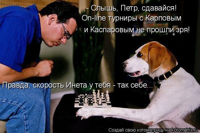 Котоматрица: - Слышь, Петр, сдавайся!  и Каспаровым не прошли зря! On-line турниры с Карповым  Правда, скорость Инета у тебя - так себе...