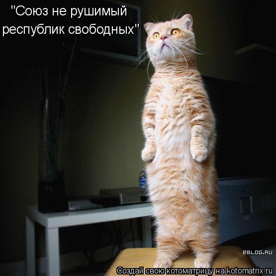 """Котоматрица: """"Союз не рушимый республик свободных"""""""