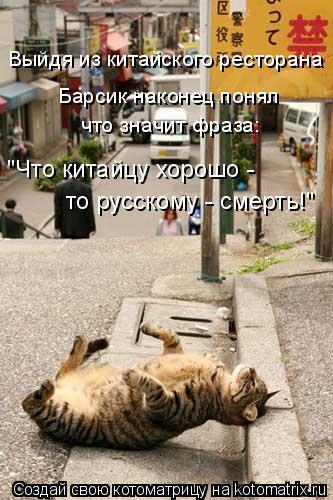 """Котоматрица: Выйдя из китайского ресторана Барсик наконец понял что значит фраза: """"Что китайцу хорошо -  то русскому - смерть!"""""""