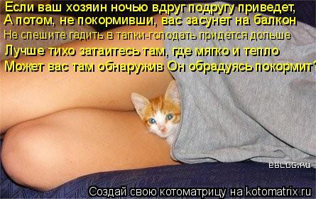 Котоматрица: Если ваш хозяин ночью вдруг подругу приведет, А потом, не покормивши, вас засунет на балкон Лучше тихо затаитесь там, где мягко и тепло Может