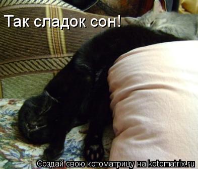 Котоматрица: Так сладок сон!