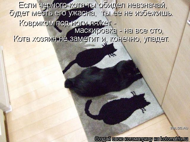 Котоматрица: Если черного кота ты обидел невзначай, будет месть его ужасна,  ты ее не избежишь. Ковриком под ноги ляжет - маскировка - на все сто, Кота хозя
