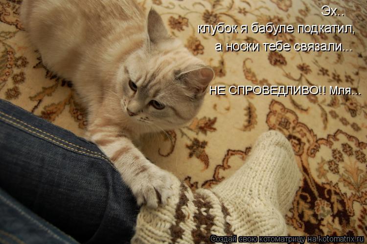 Котоматрица: Эх.. клубок я бабуле подкатил, а носки тебе связали... НЕ СПРОВЕДЛИВО!! Мля...