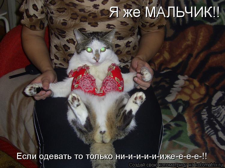 Котоматрица: Я же МАЛЬЧИК!! Если одевать то только ни-и-и-и-и-иже-е-е-е-!!