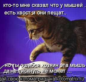 Котоматрица: кто-то мне сказал что у мышей .. есть хвост и они пещат.. но ты ошибся хозяин эта мышь даже пискнуть не может ...