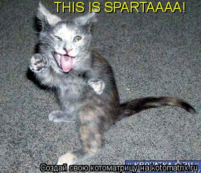 Котоматрица: THIS IS SPARTAAAA!