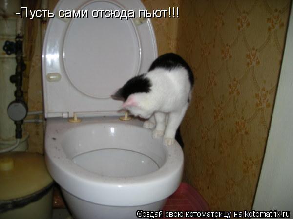 Котоматрица: -Пусть сами отсюда пьют!!!