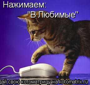 """Котоматрица: Нажимаем: """"В Любимые"""""""