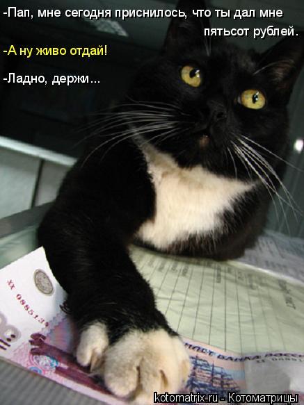 Котоматрица: -Пап, мне сегодня приснилось, что ты дал мне пятьсот рублей. -А ну живо отдай! -Ладно, держи...