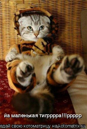 Котоматрица: йа маленькая тигрррра!!!ррррр