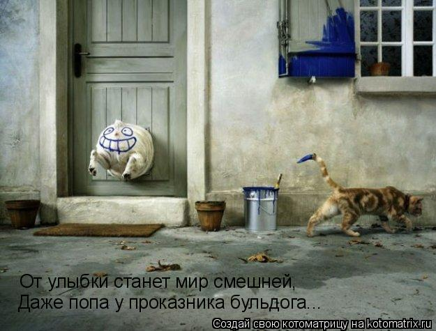 Котоматрица: От улыбки станет мир смешней, Даже попа у проказника бульдога...