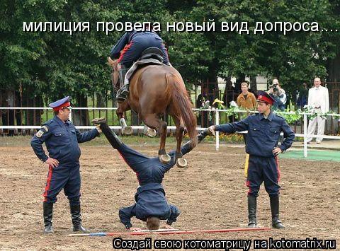 Котоматрица: милиция провела новый вид допроса....