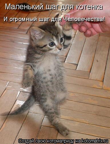 Котоматрица: Маленький шаг для котенка И огромный шаг для Человечества!
