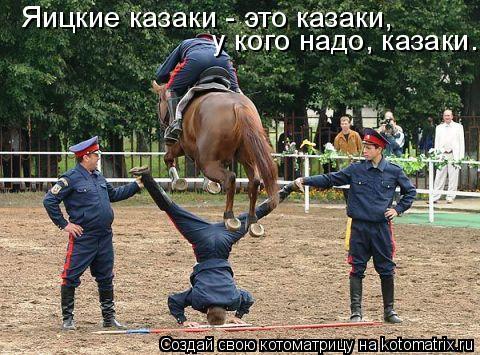 Котоматрица: Яицкие казаки - это казаки, у кого надо, казаки...