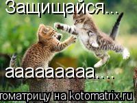 Котоматрица: Защищайся... ааааааааа....