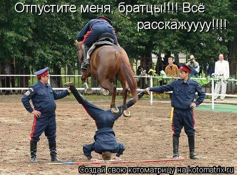 Котоматрица: Отпустите меня, братцы!!!! Всё расскажуууу!!!!