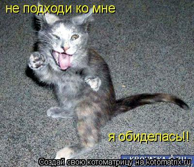 Котоматрица: не подходи ко мне я обиделась!!