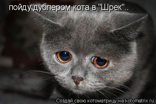 """Котоматрица: пойду дублером кота в """"Шрек"""".."""