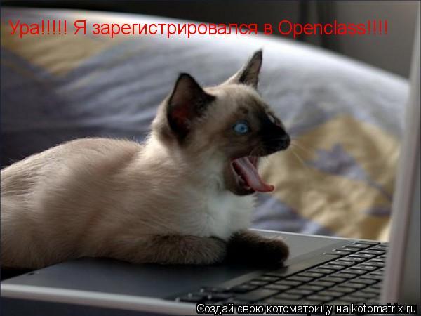 Котоматрица: Ура!!!!! Я зарегистрировался в Openclass!!!!