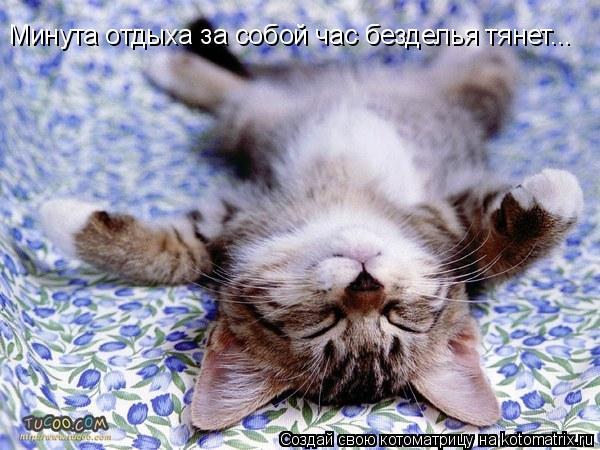 Котоматрица: Минута отдыха за собой час безделья тянет...
