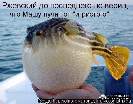 """Котоматрица: Ржевский до последнего не верил, что Машу пучит от """"игристого""""."""